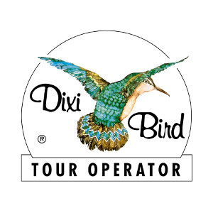 Dixi Bird Tour operator